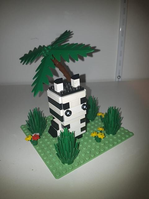 Zebre dans la savane